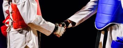 Protections Taekwondo