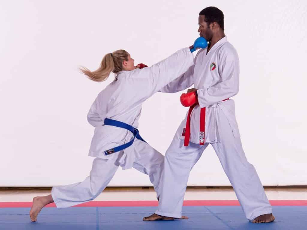 tatami tapis karate WKF