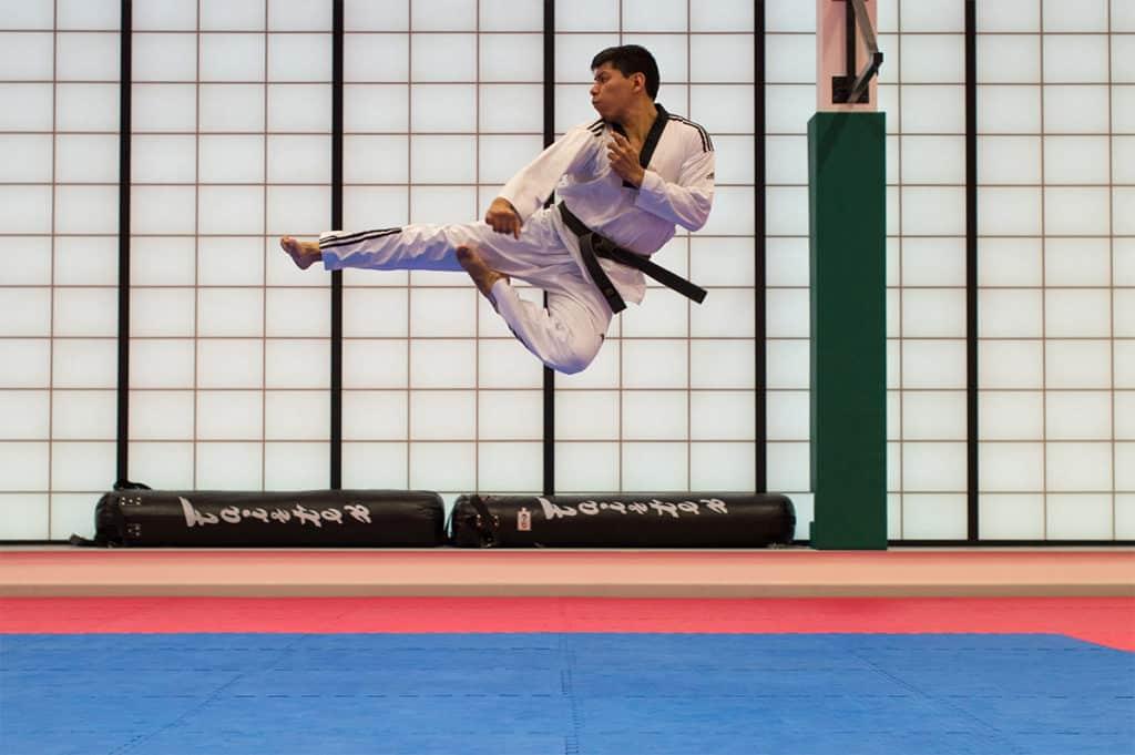 Pratique des arts martiaux sur un tatami puzzle